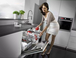 Купольные посудомоечные машины обзор